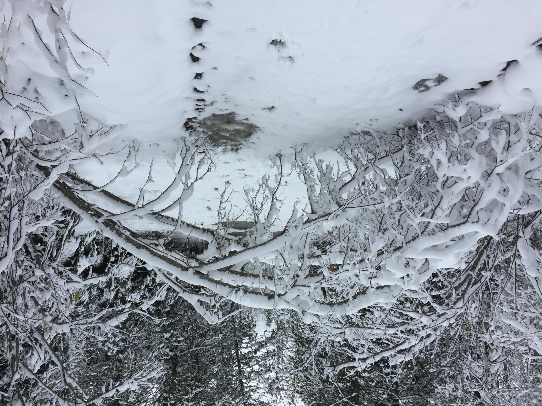 Snow on the Arrowhead!