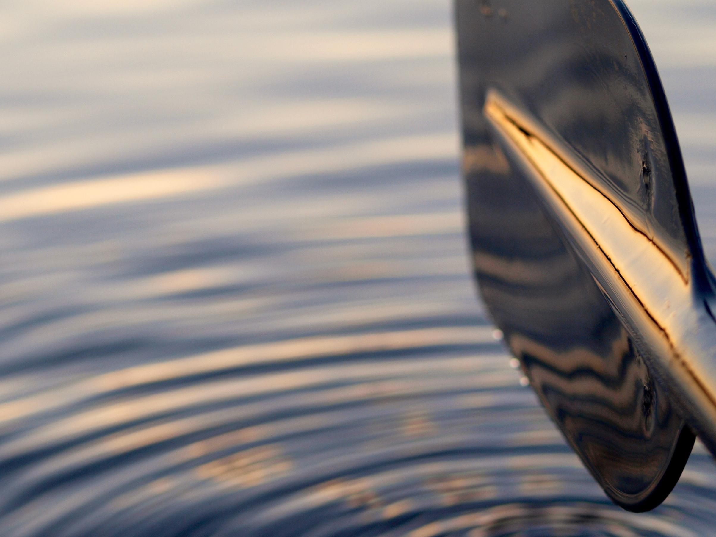 Paddle Reflections