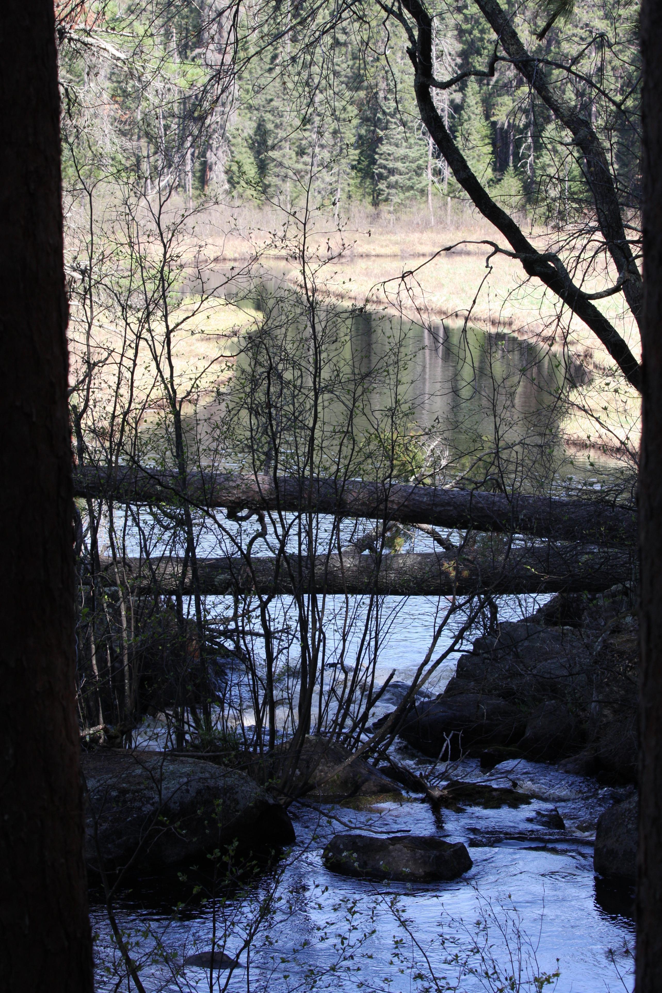 Dahlgren River