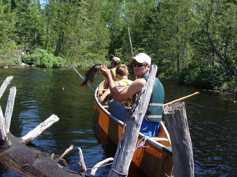 summer 2012-Caribou