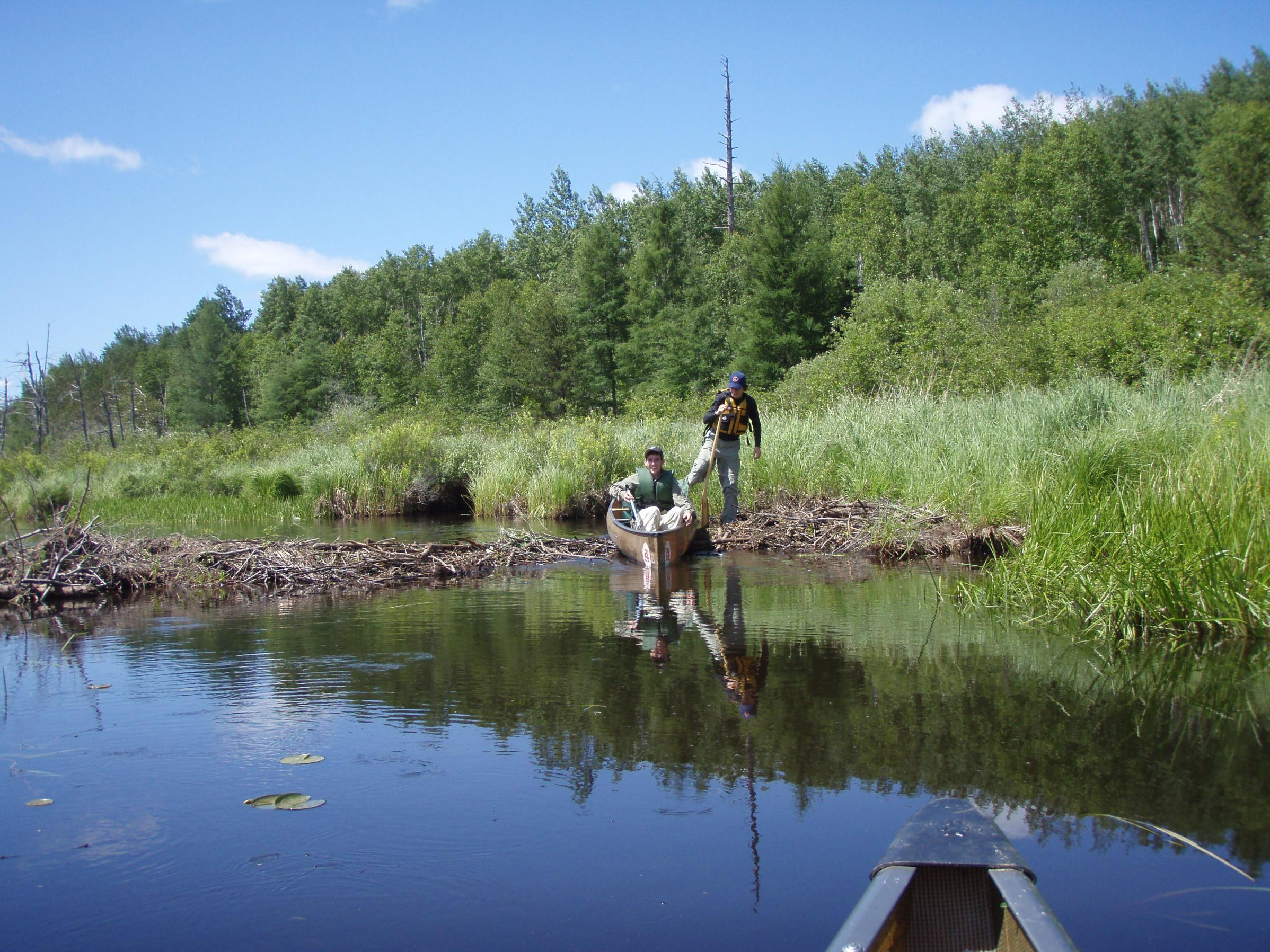 Bwca may 2017 pike fishing help out a rookie boundary for Boundary waters fishing