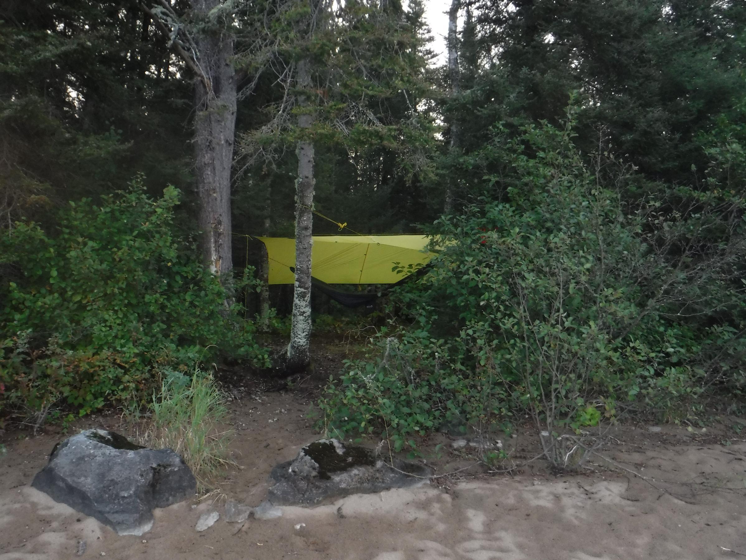 Bald Eagle campsite