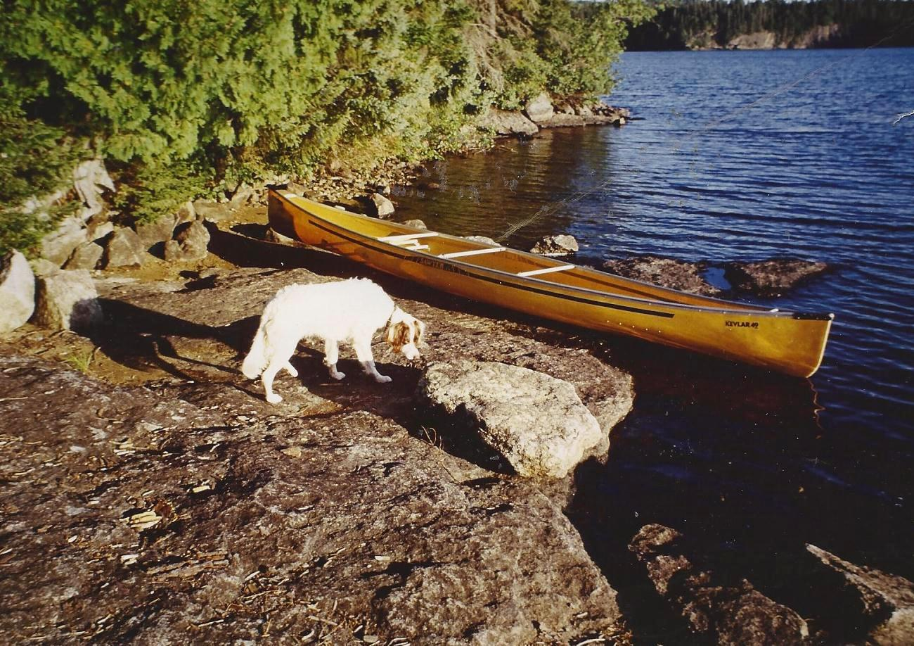 BWCA canoeing dogs Boundary Waters Listening Point - General ...