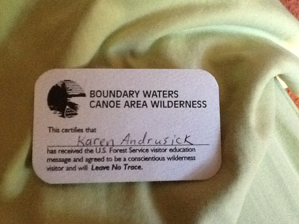 Bwca movie pass lol