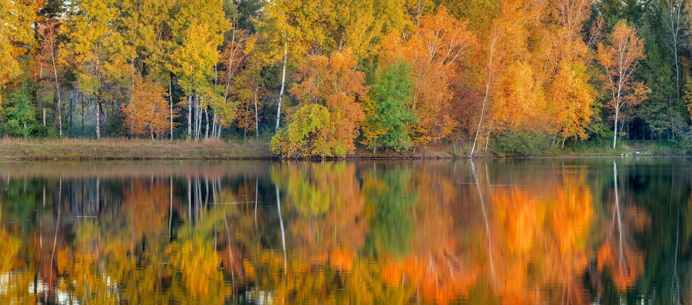 WI fall foliage
