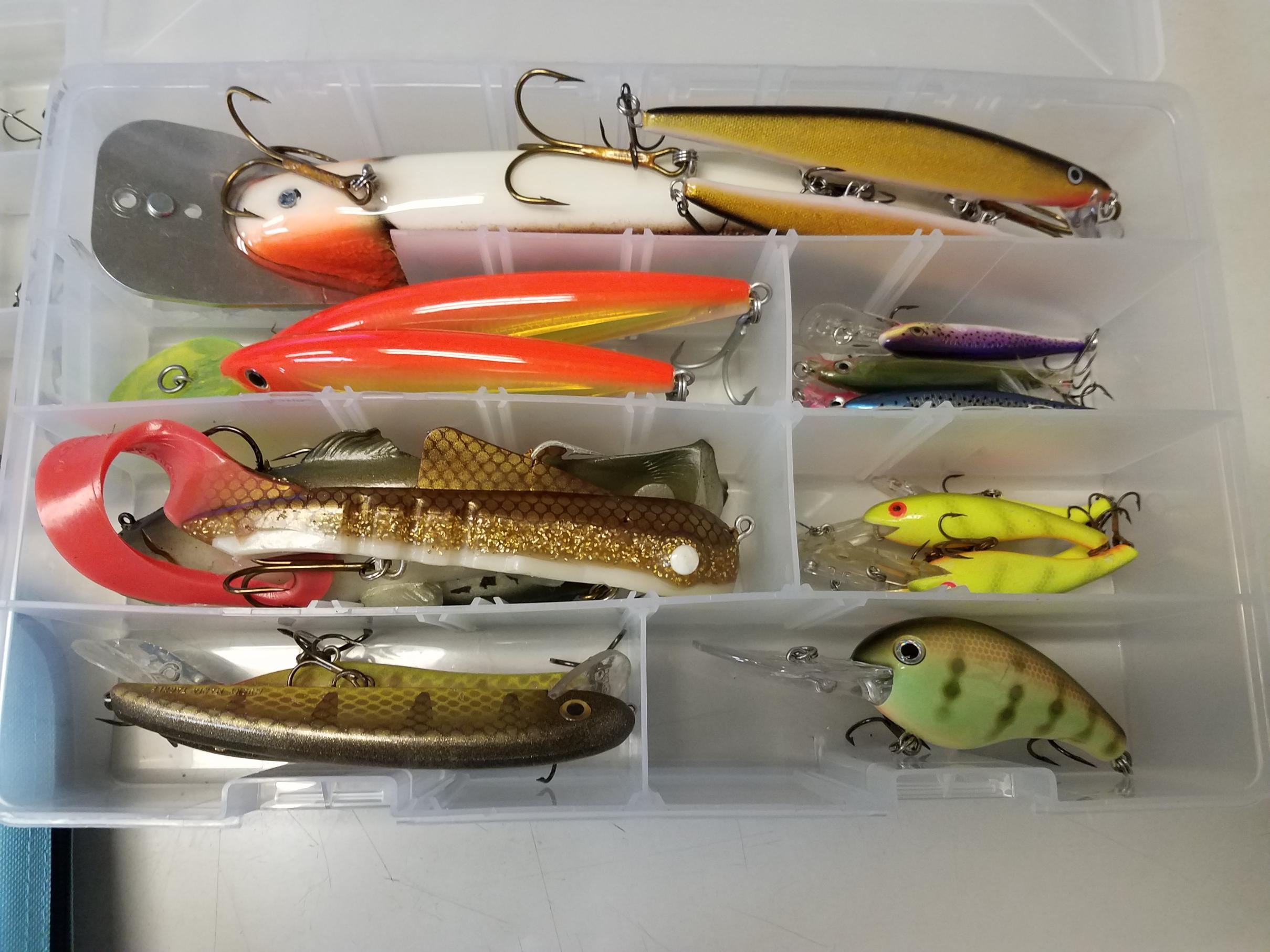 222×Hooks Swivels Carp Fishing Tackle Box  Safety Clips Tubing Set Ball Bearing