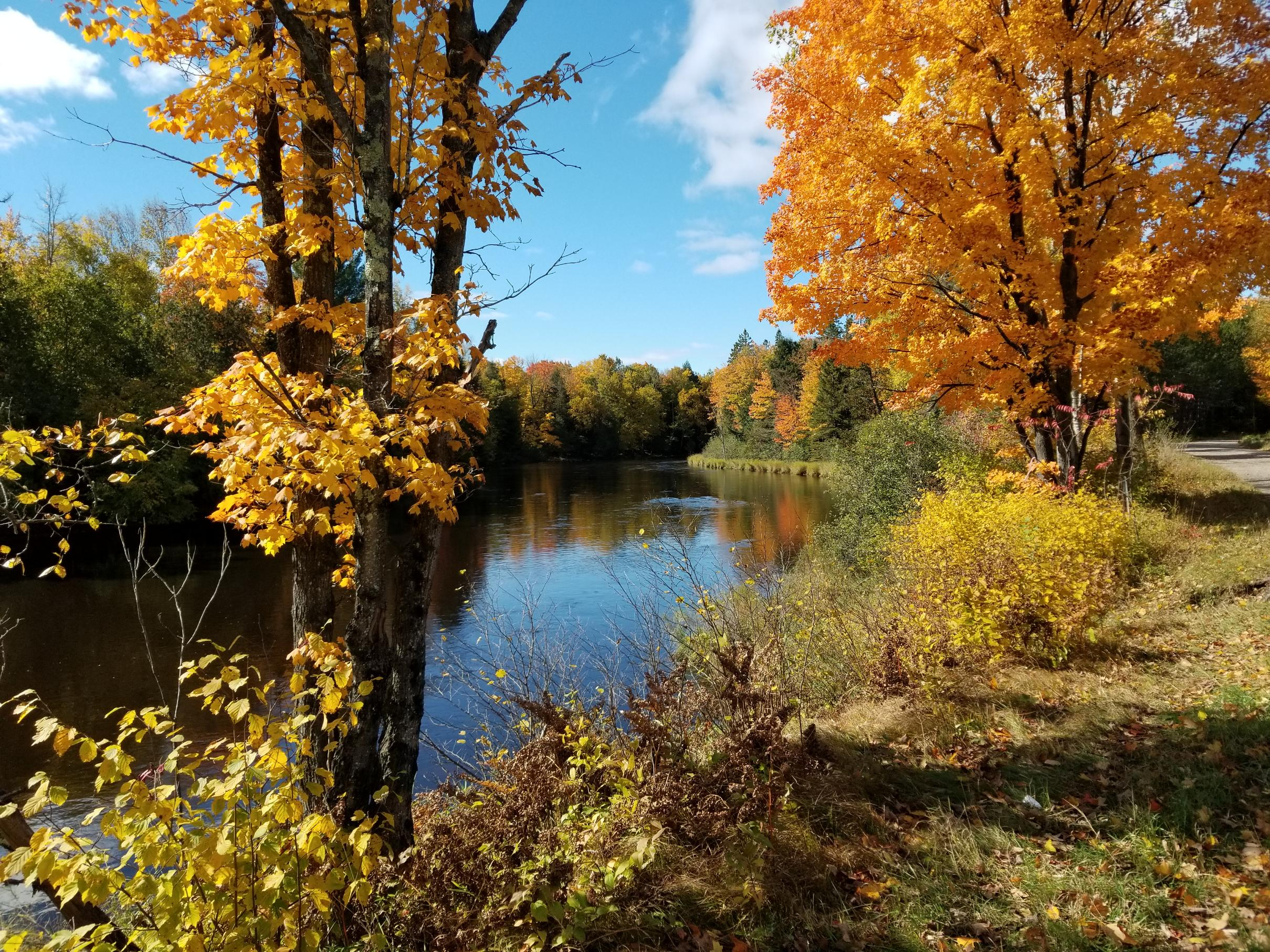 Wolf River view, 10/2018