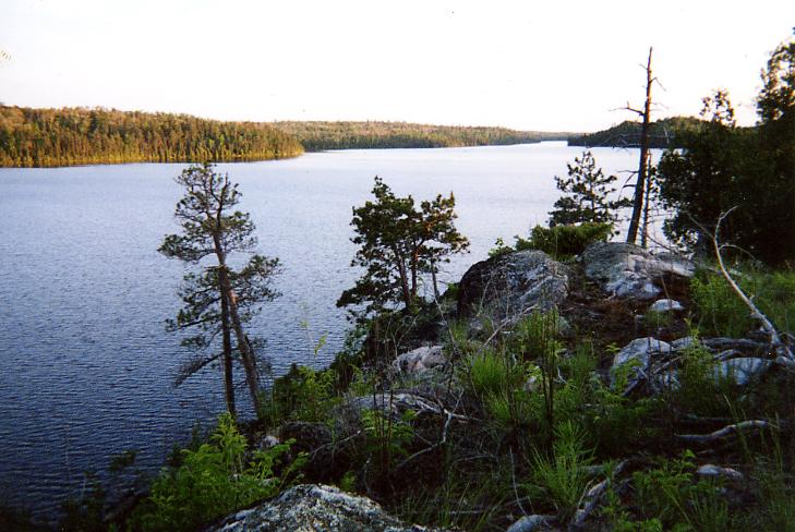 Louisa Lake evening