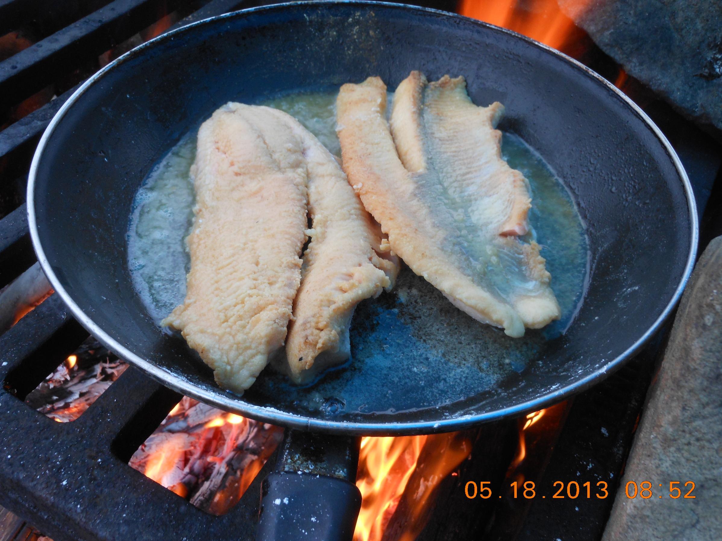 battered lake trout jasper