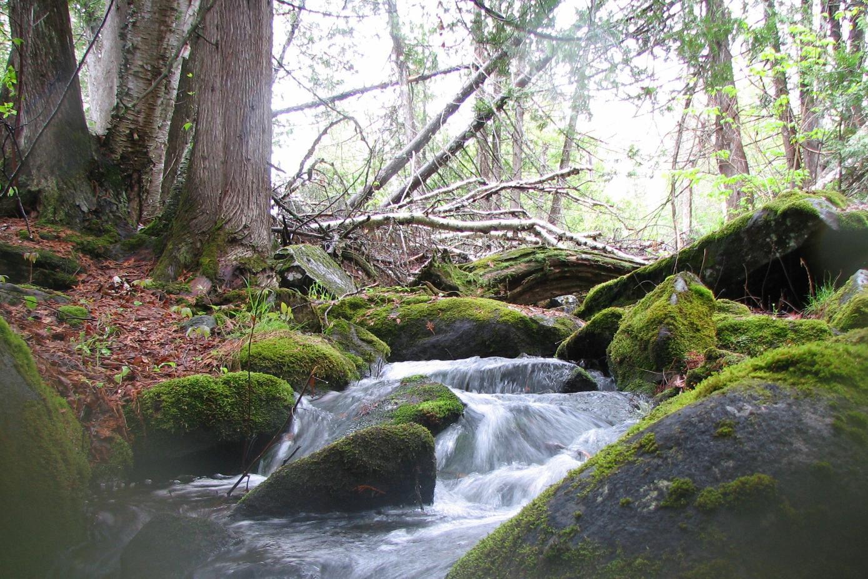 H. Undisclosed creek II