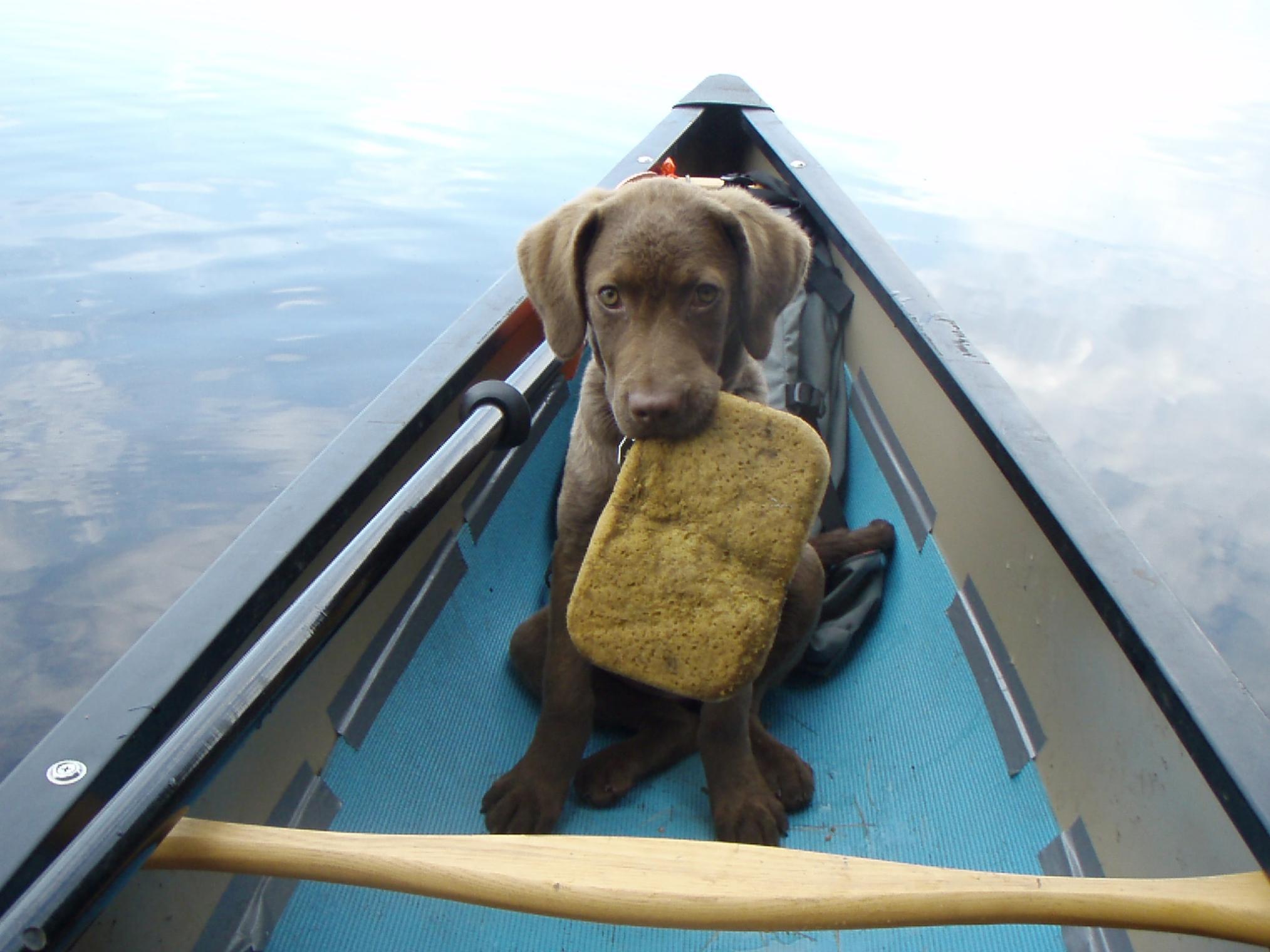 Bwca Solo Canoe Boundary Waters Gear Forum