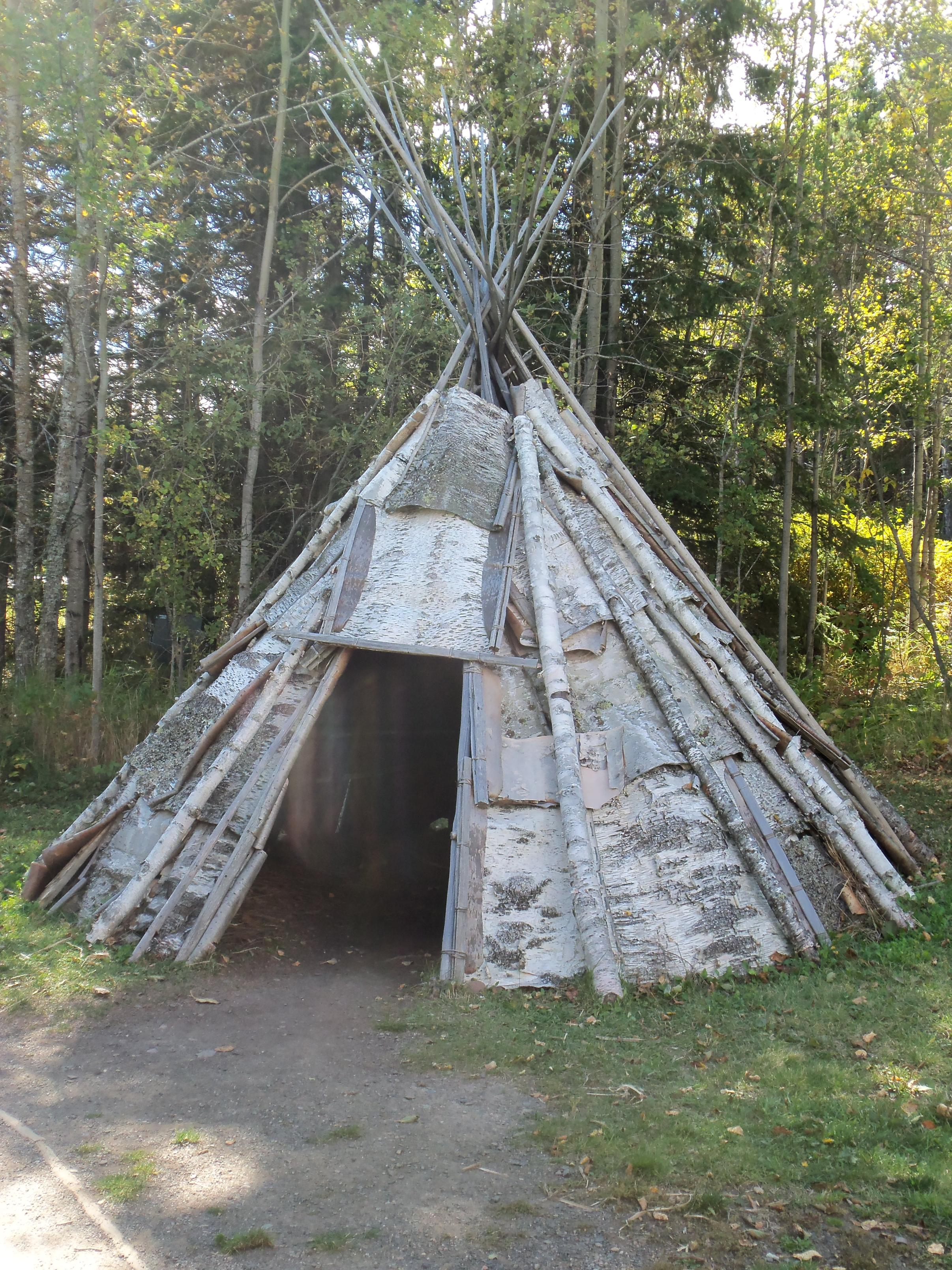 Birch bark tepee