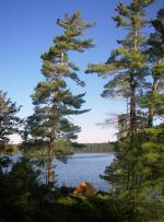 Ballard Lake Campsite, Quetico