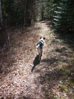 Katy enjoys the much easier trail along southern side of loop.