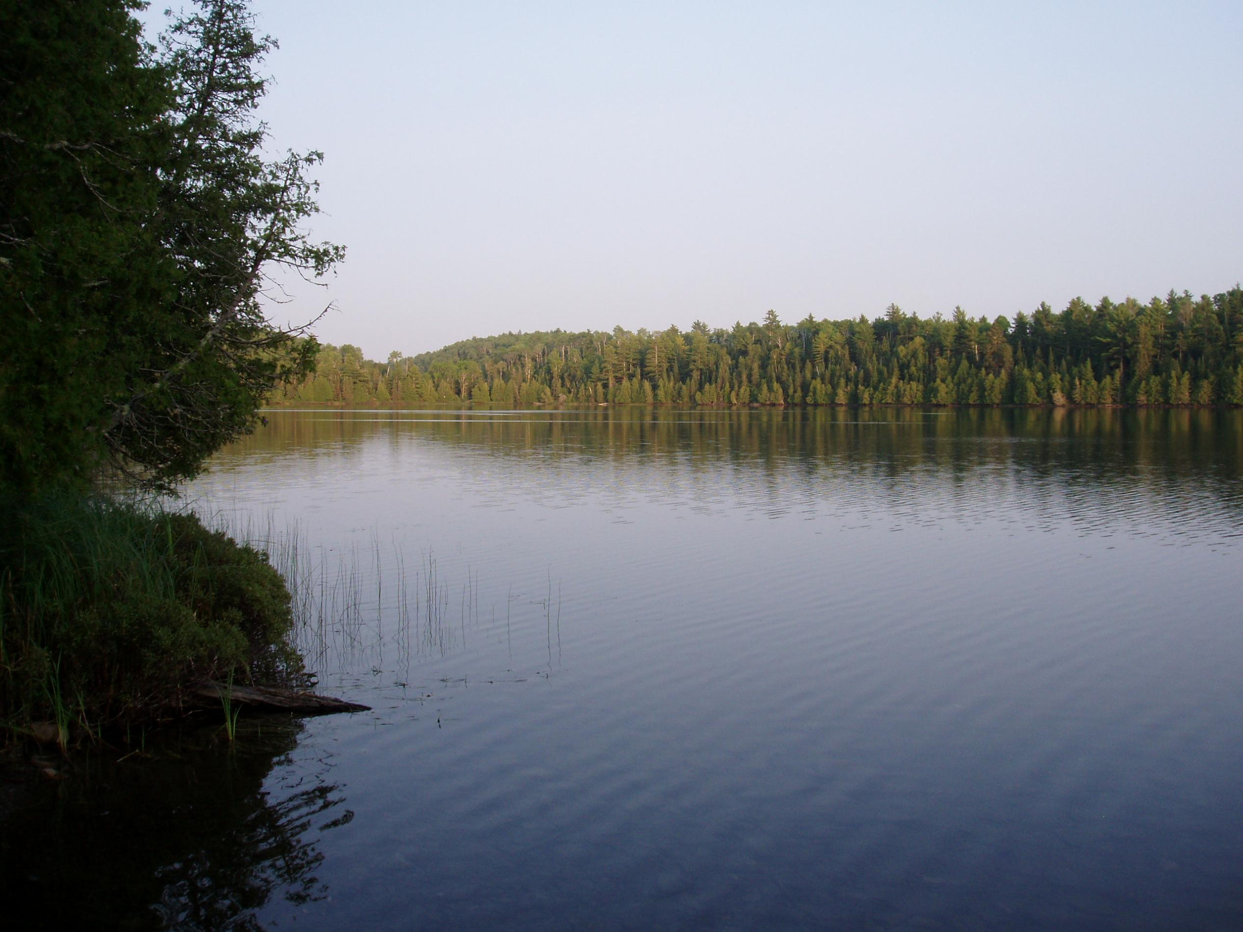 looking east to Crystal Lake portage