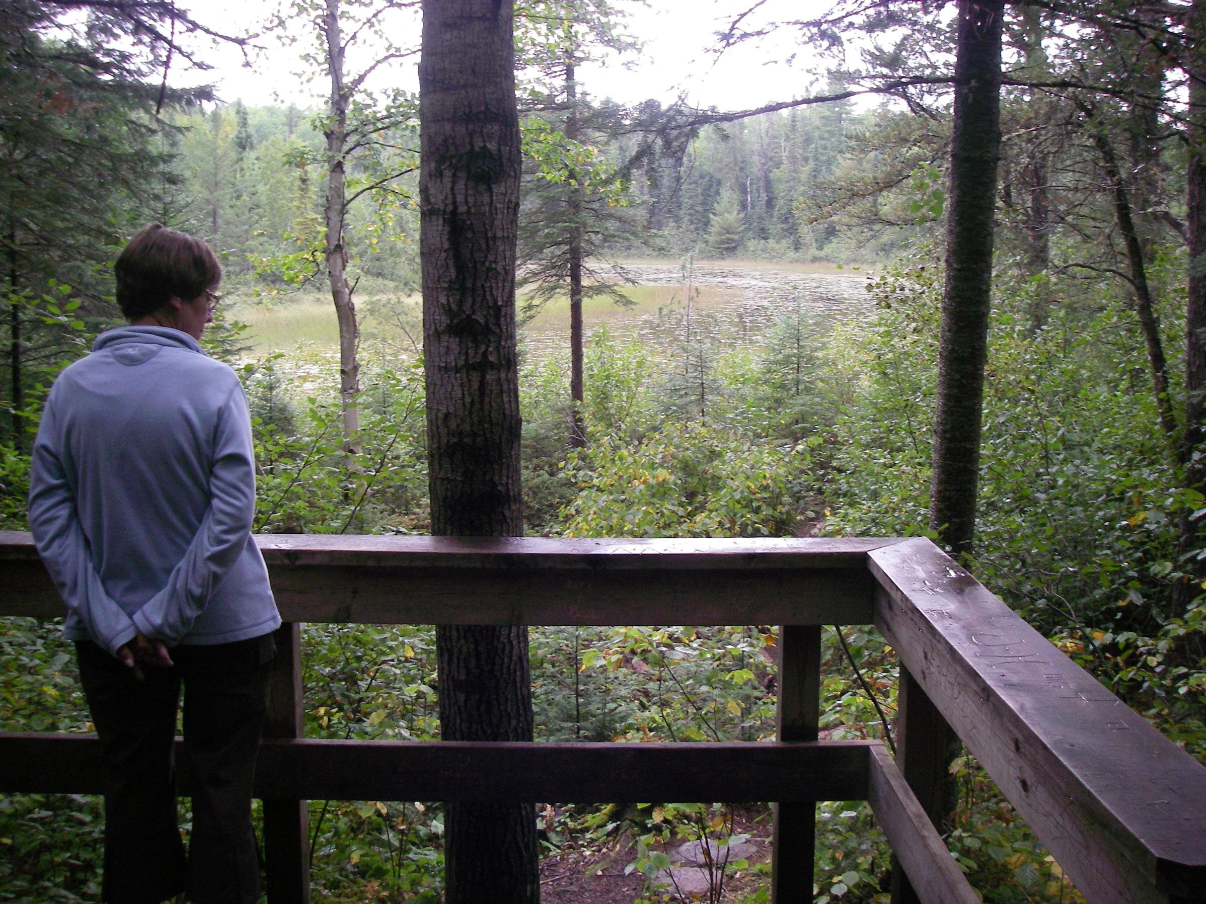 Moose overlook on Gunflint
