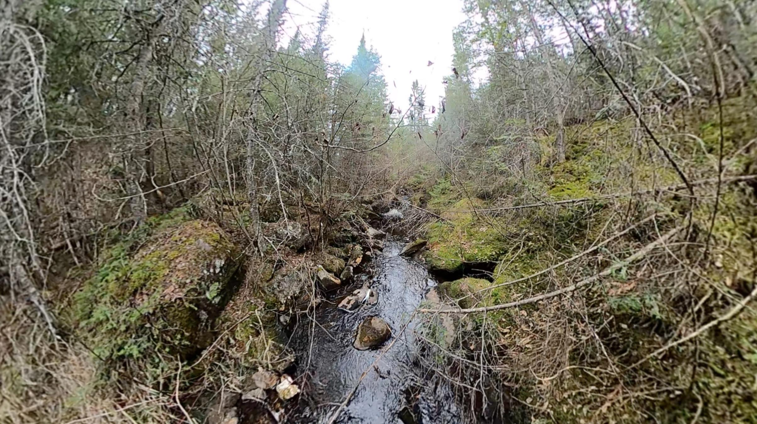 Creek into Kivandeba Lake