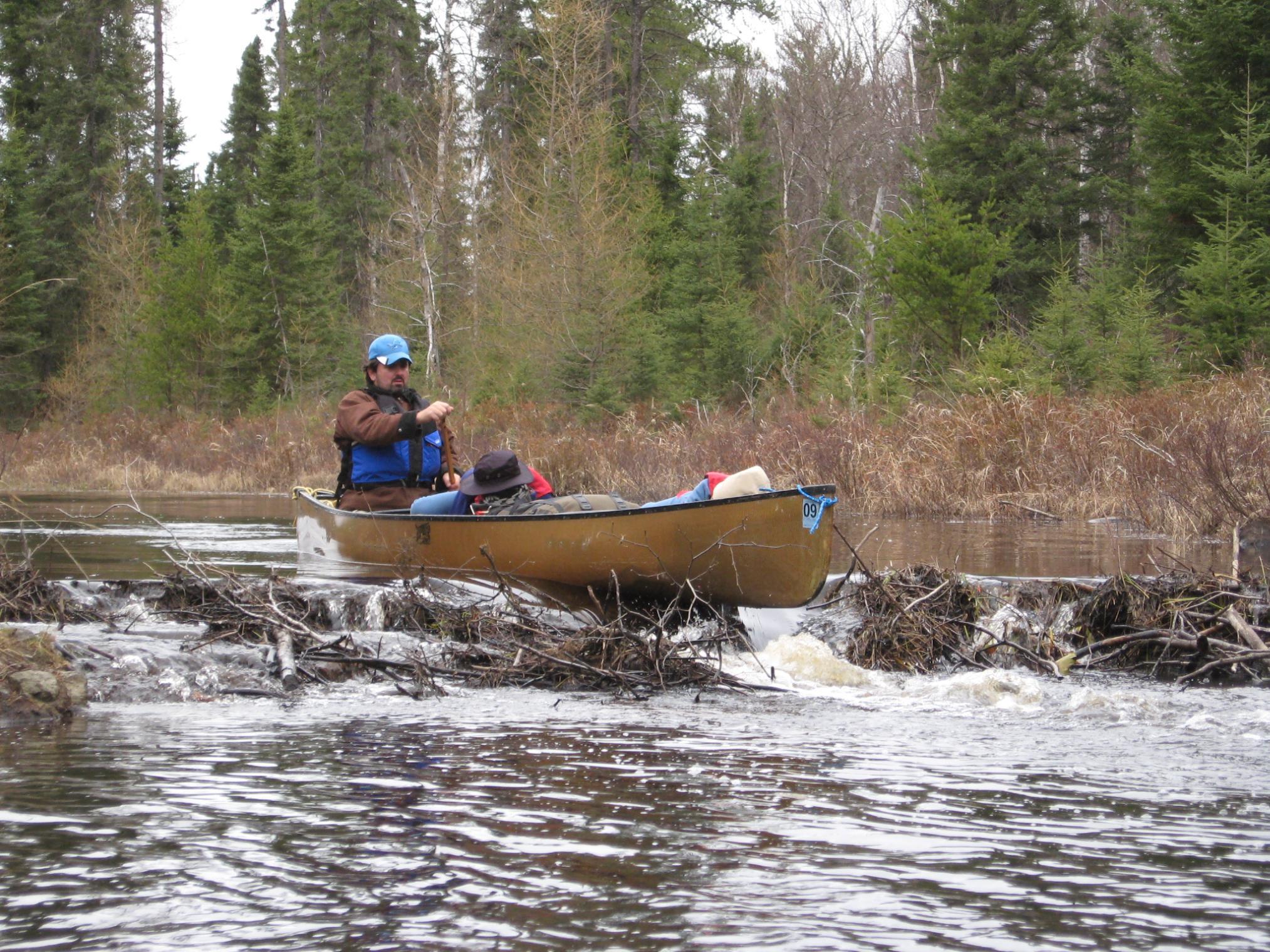 Running a Beaver Dam w/napping kids!