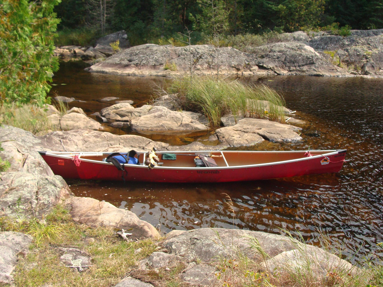 McEwen Creek out of Turn