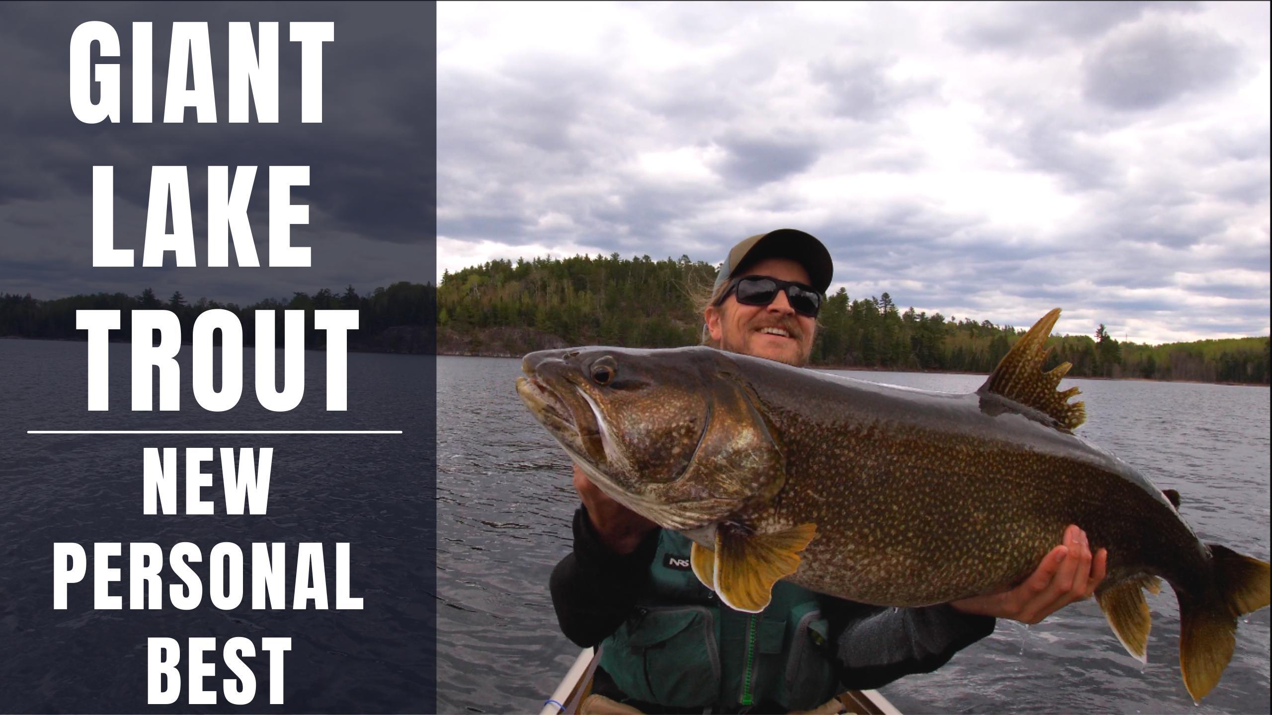Giant Lake Trout Lac La Croix Boundary Waters Fishing