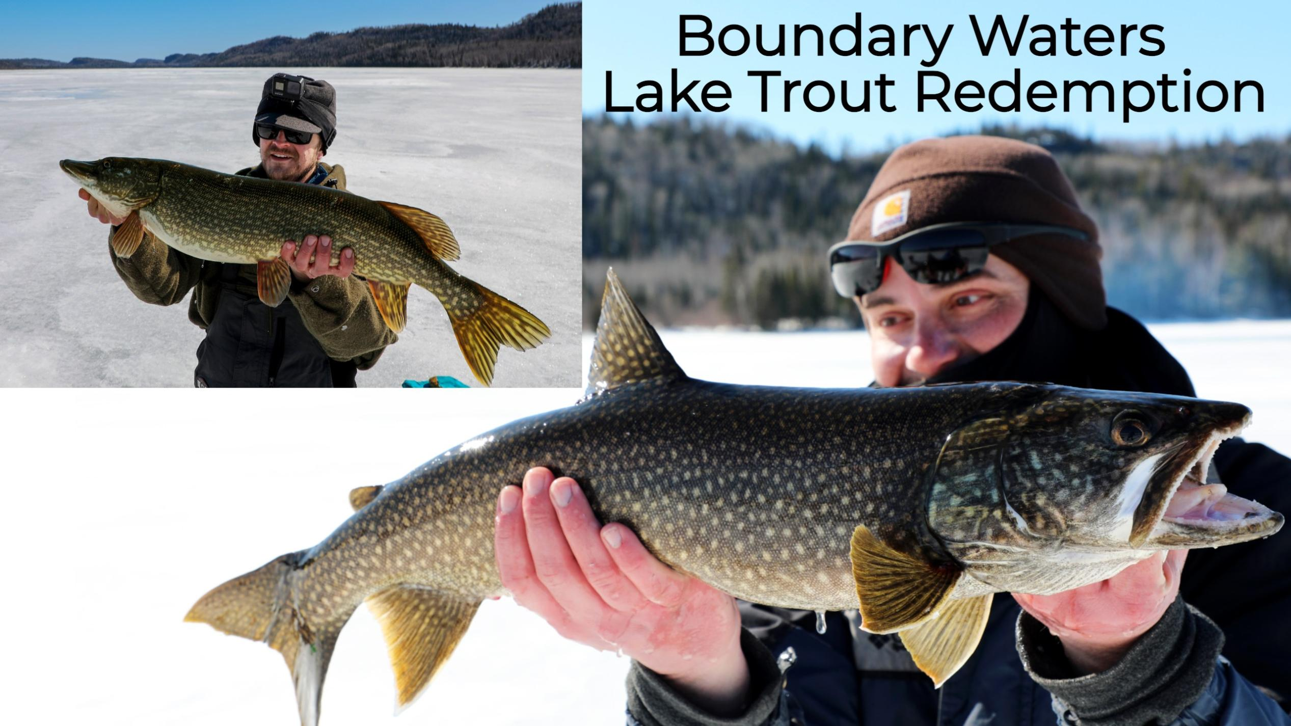 Boundary Waters Lake Trout Redemption