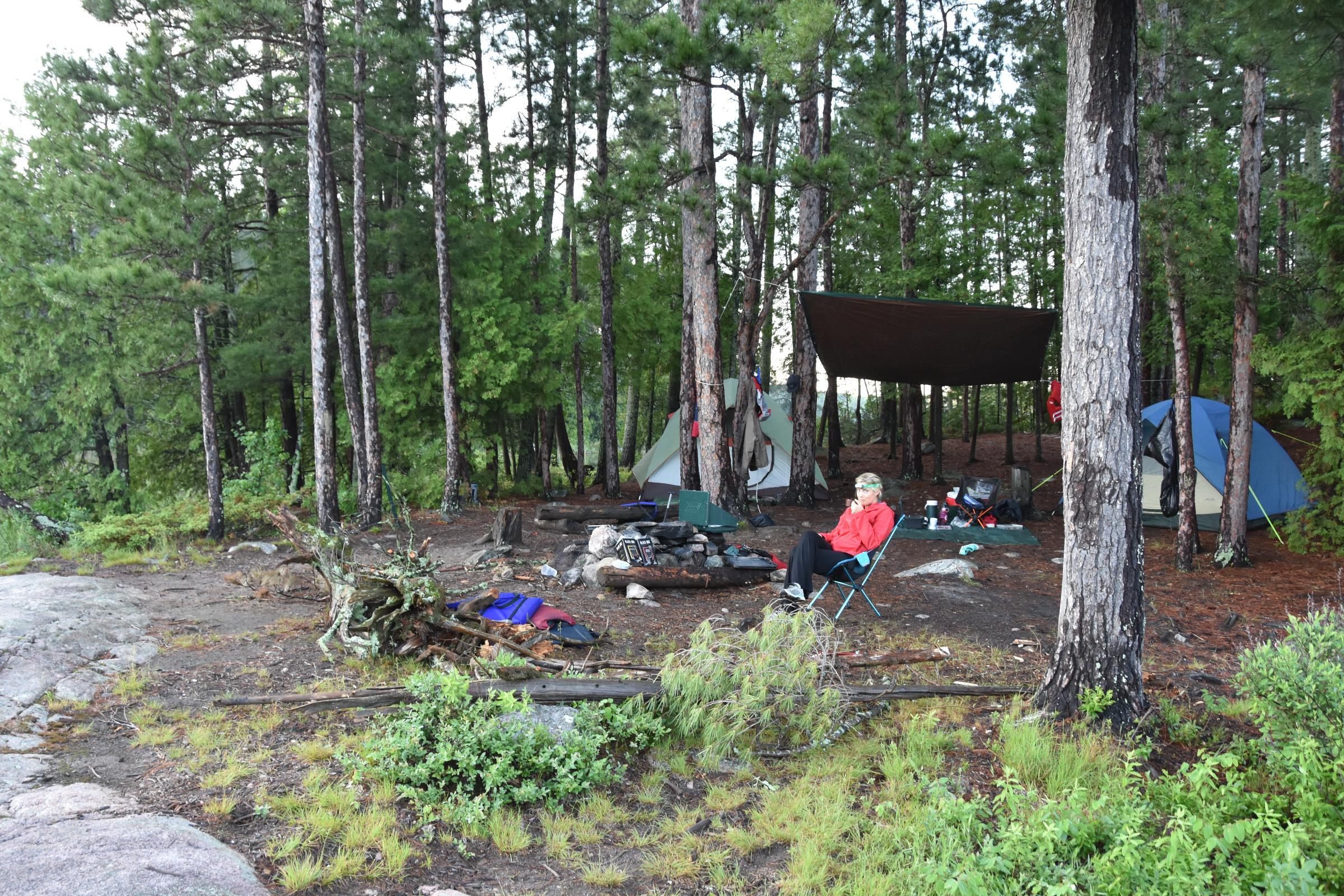 camp on Mcaree