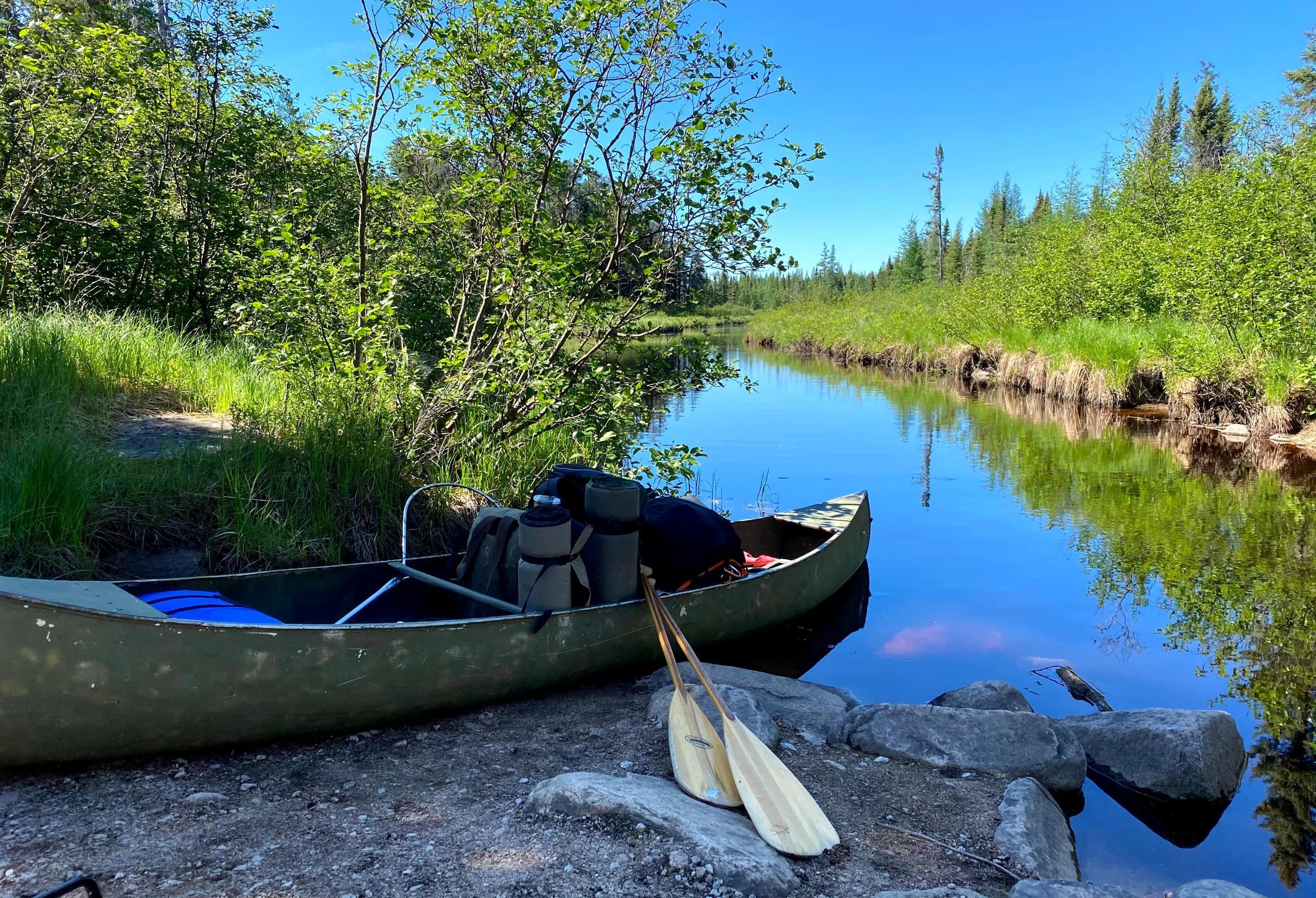 Moose Lake South June 2020