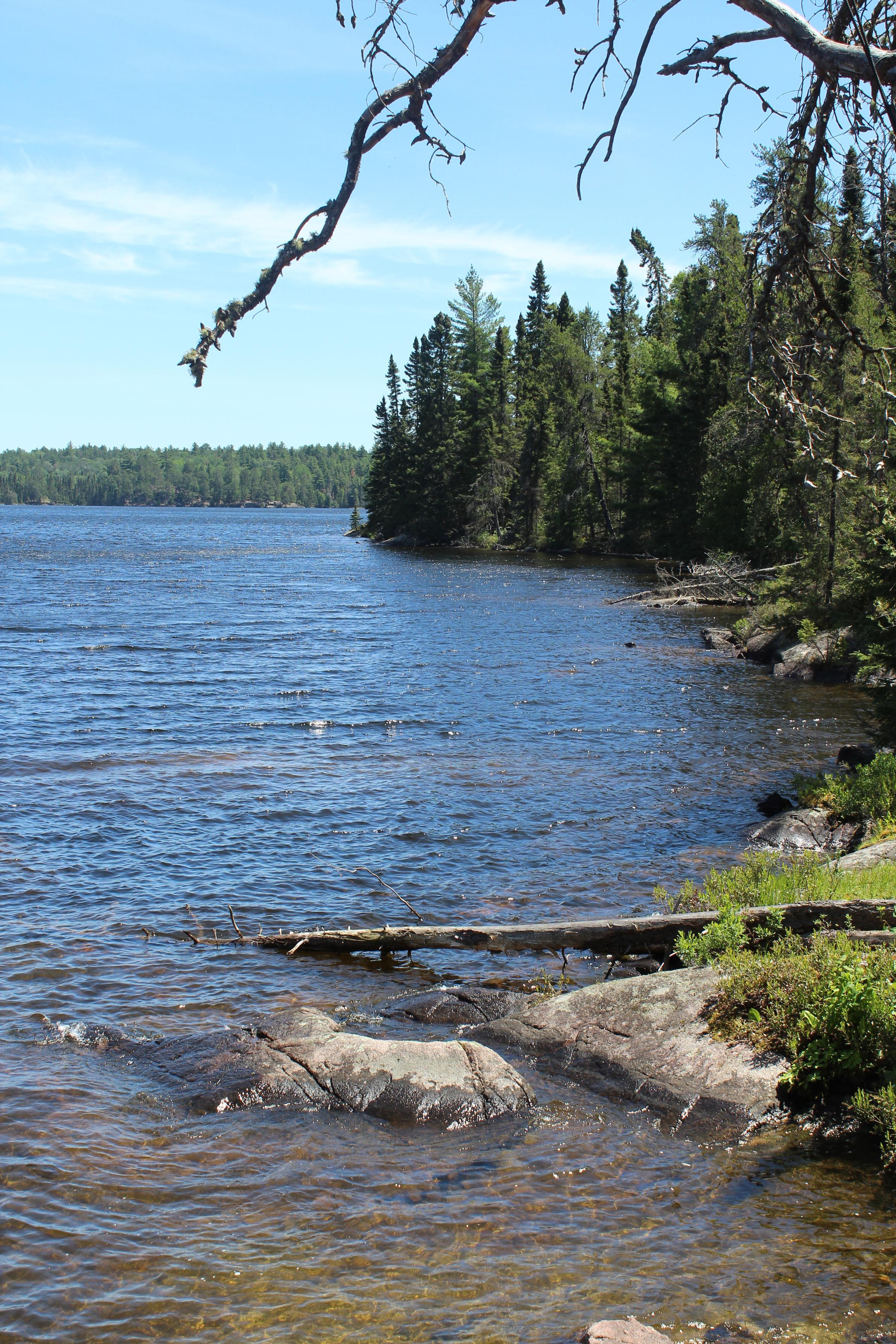 Lynx Lake Camp #65