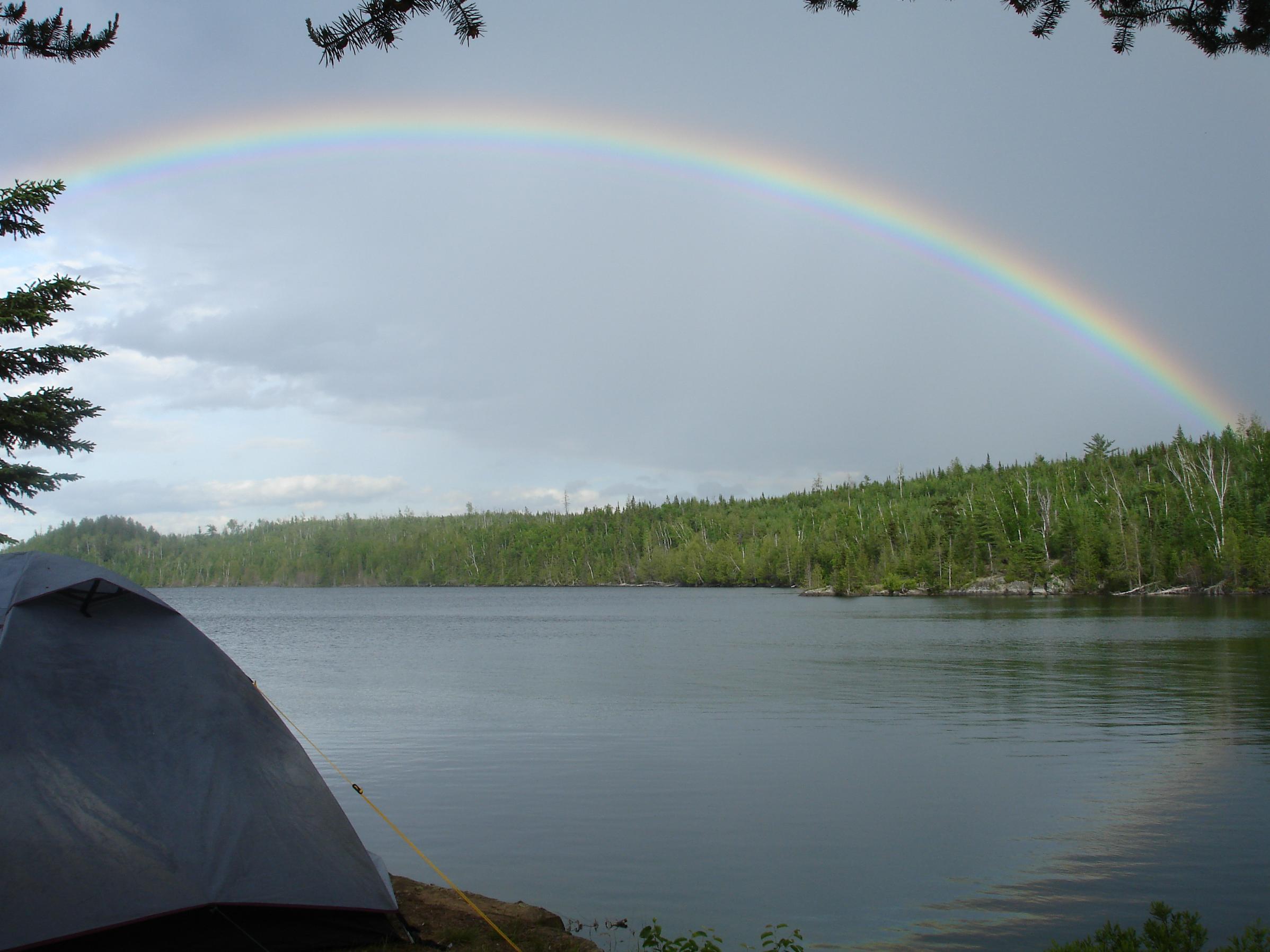 Vera Rainbow