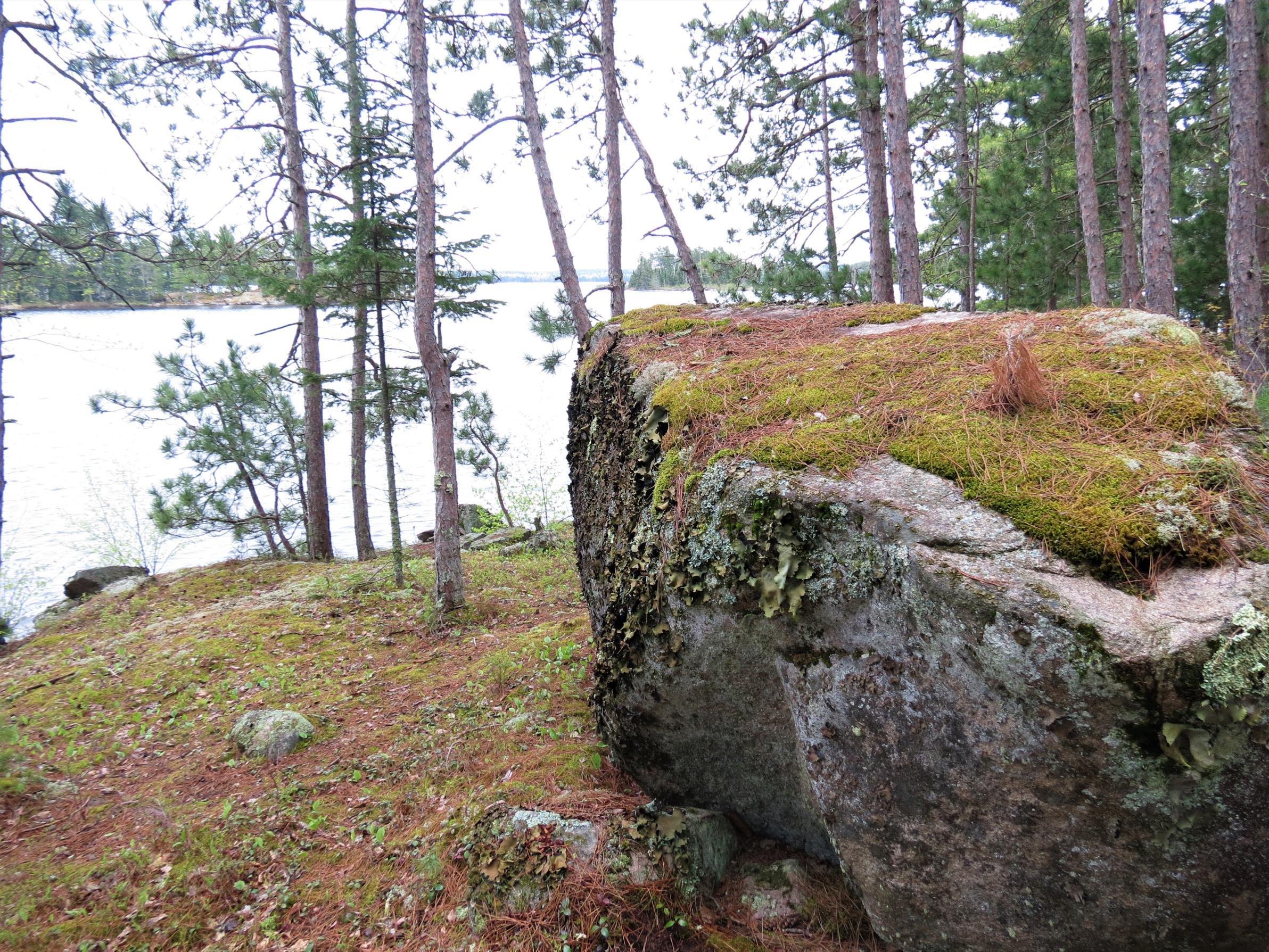 I. Mossy rock