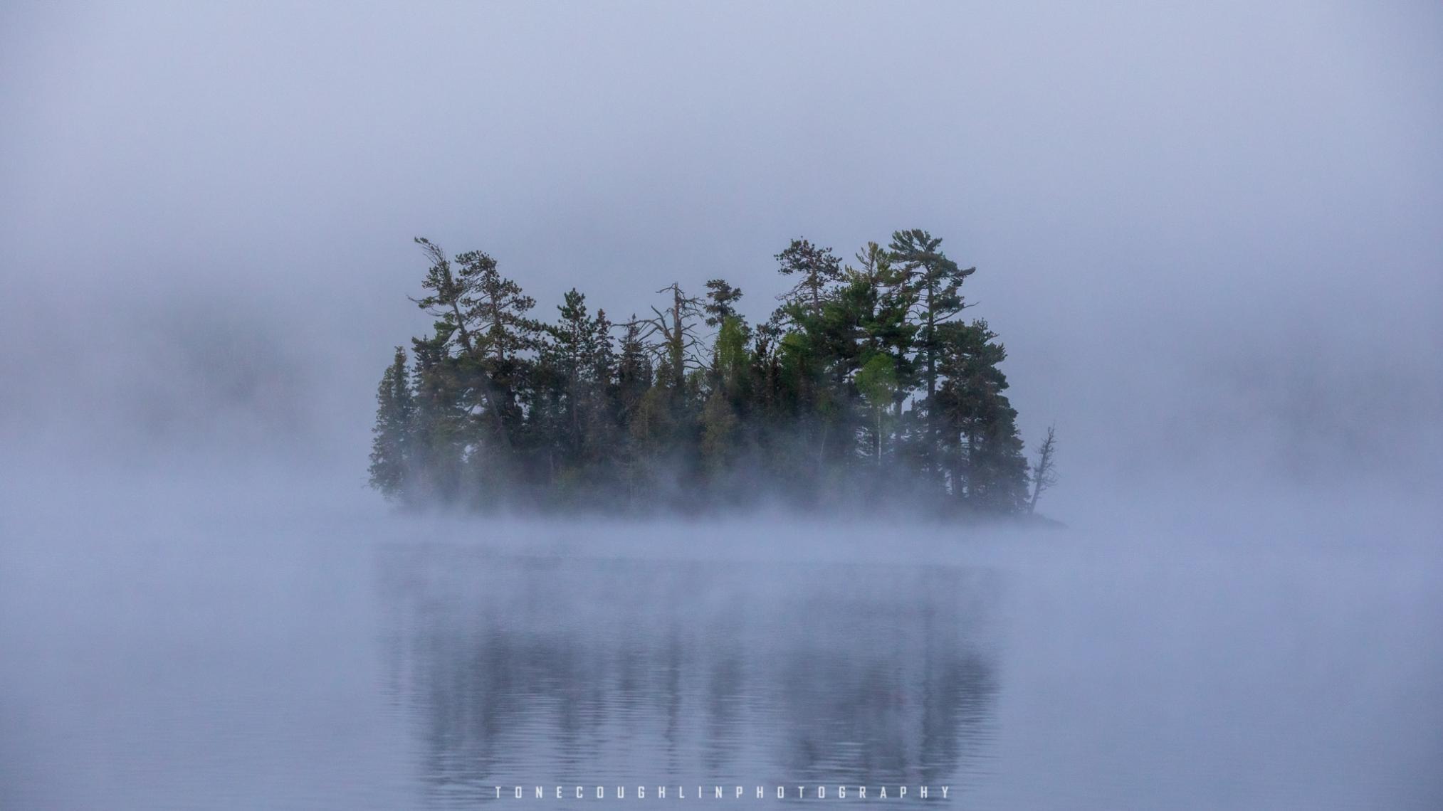 Foggy Morning on Pine Lake