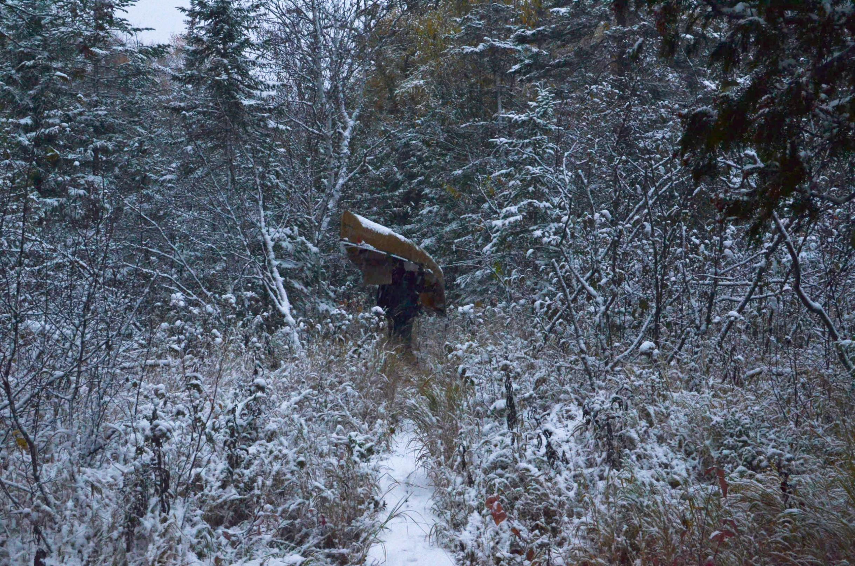 Snowy Portage