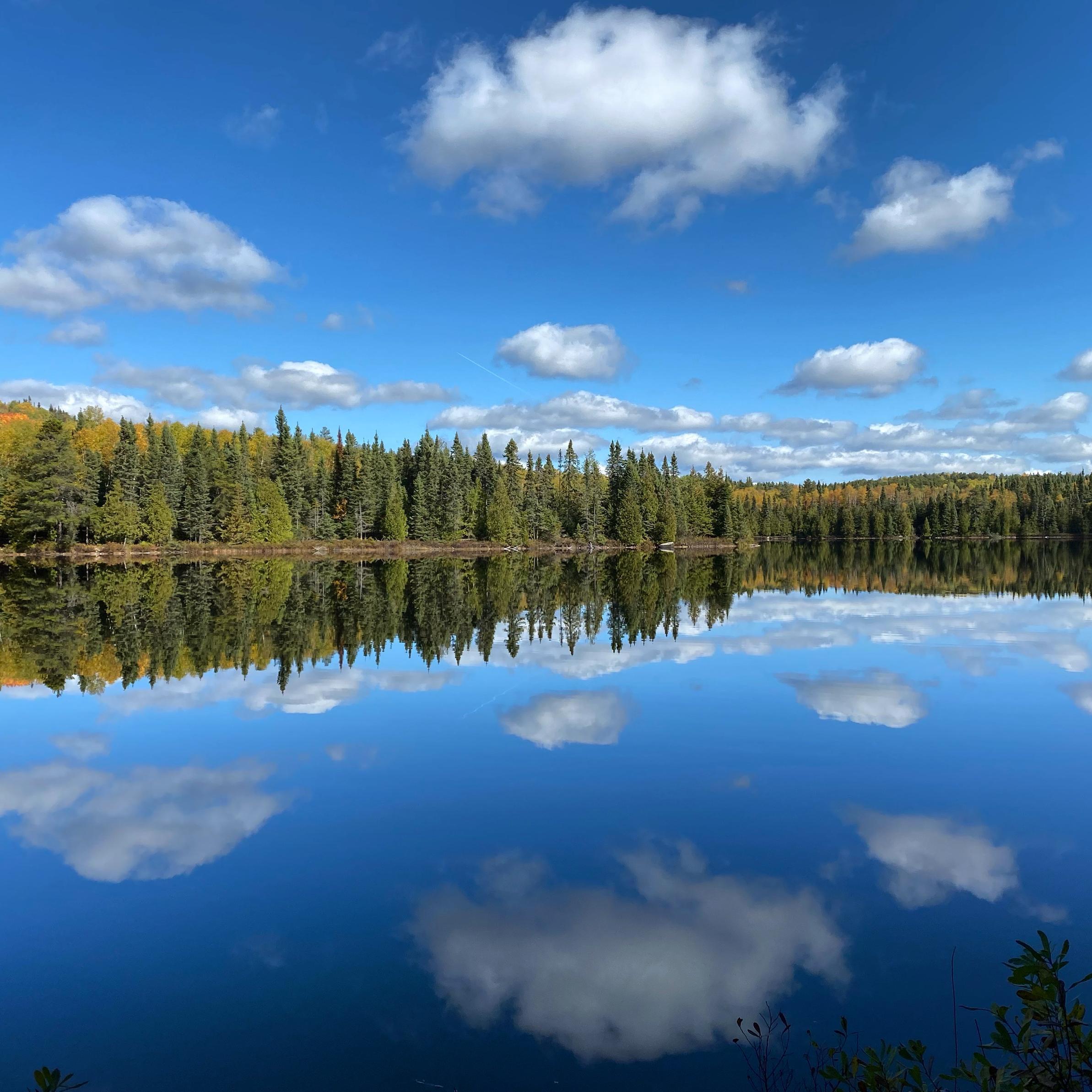 Brule Lake Reflection