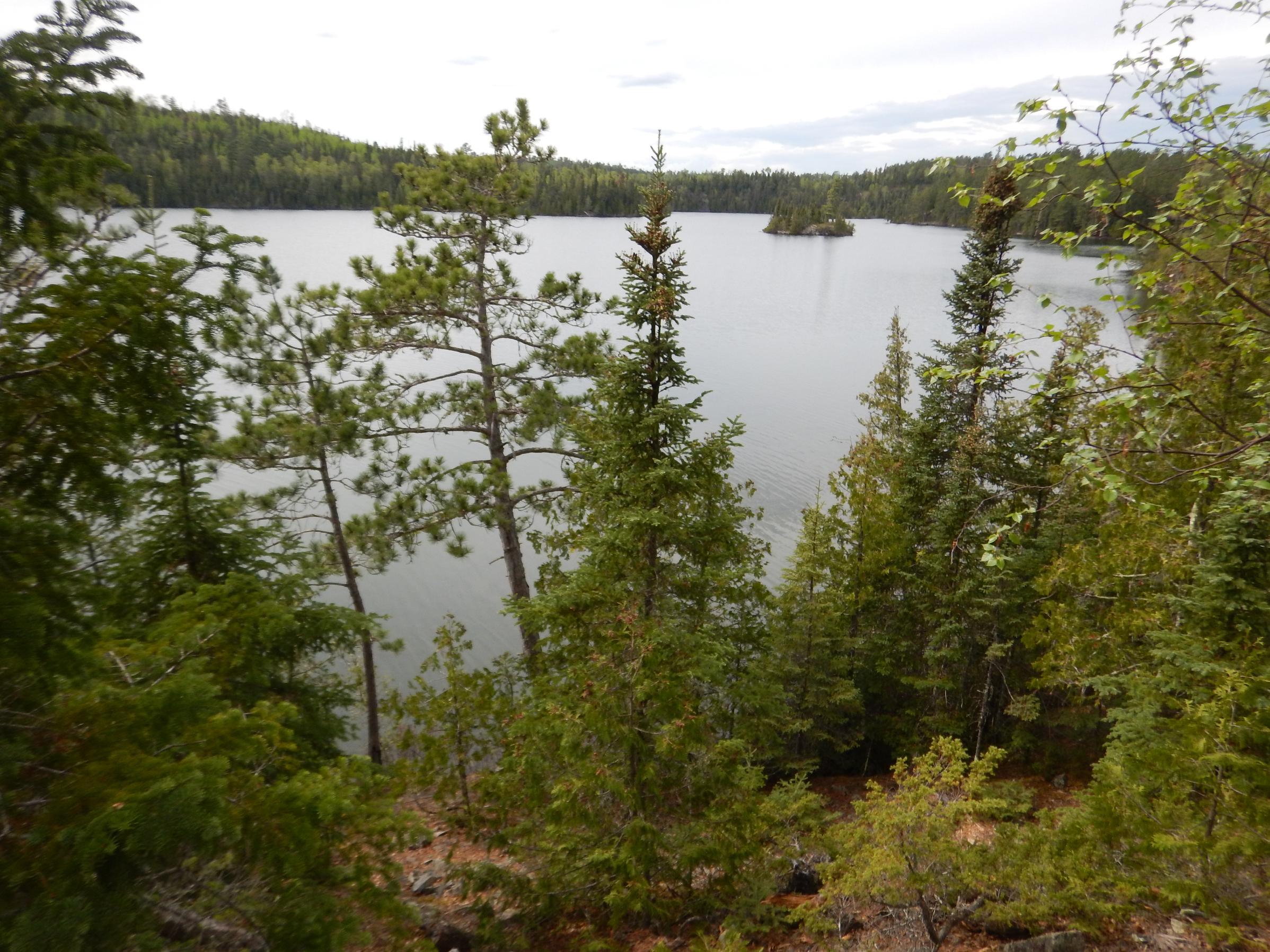Ester campsite overlook