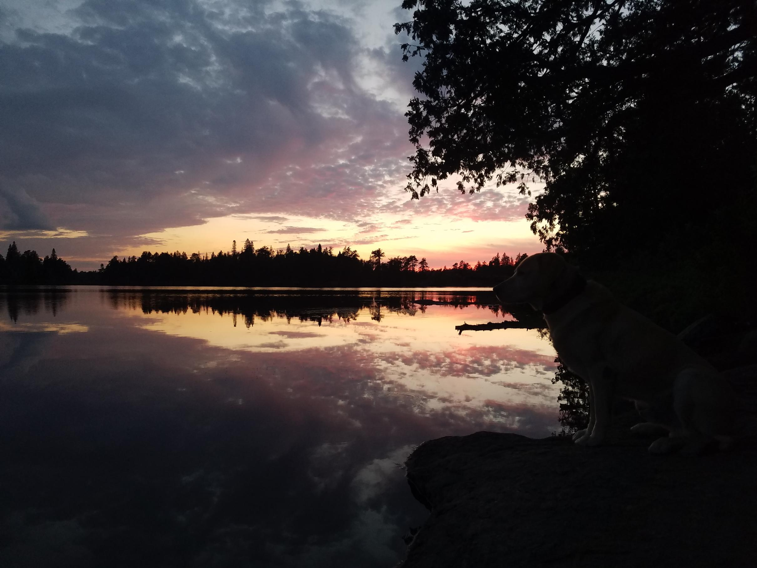 Malberg Sunset